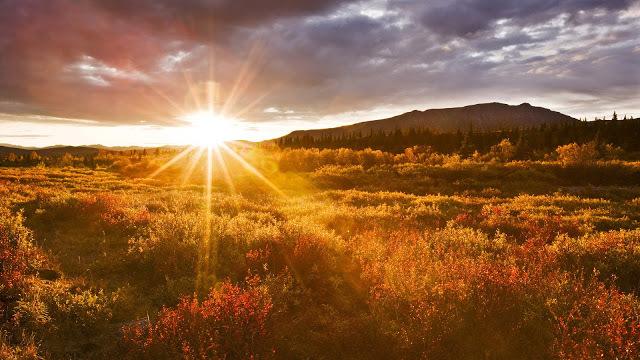 sunrise-free-690785