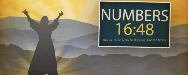 1238_Numbers-628x250
